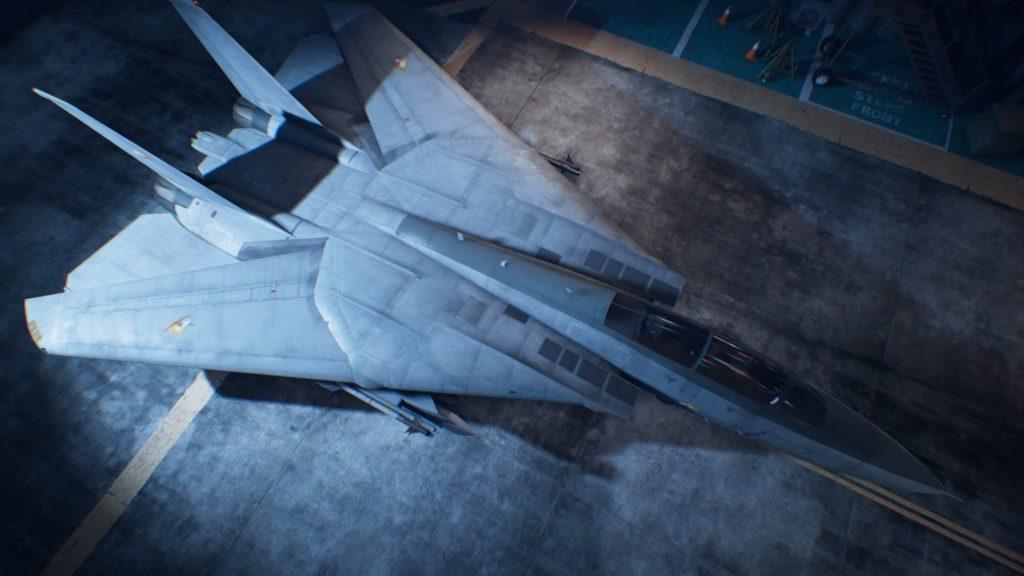 ACE COMBAT™ 7: SKIES UNKNOWN_F-14D Super Tomcat01 Osea Skin