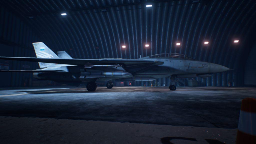 ACE COMBAT™ 7: SKIES UNKNOWN_F-14D Super Tomcat06 Strider Skin