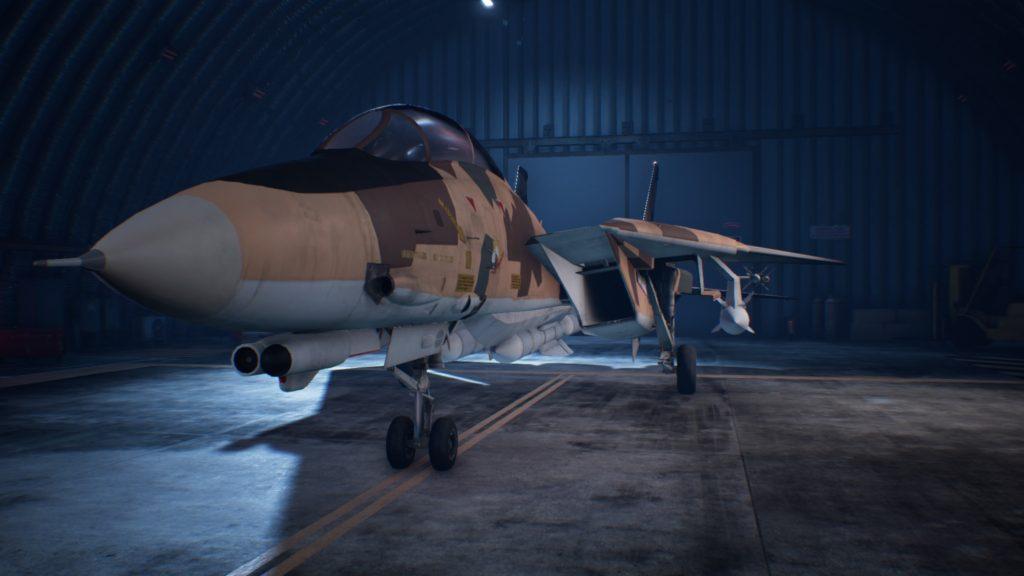 ACE COMBAT™ 7: SKIES UNKNOWN_F-14D Super Tomcat 03 Special Skin