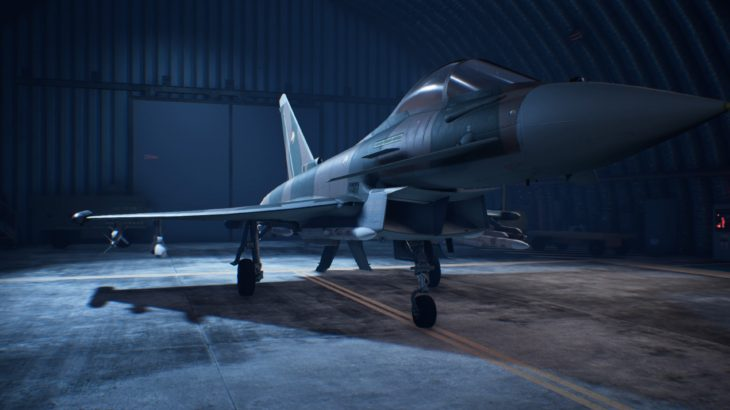 ACE COMBAT™ 7: SKIES UNKNOWN_Typhoon 02 Erusea Skin