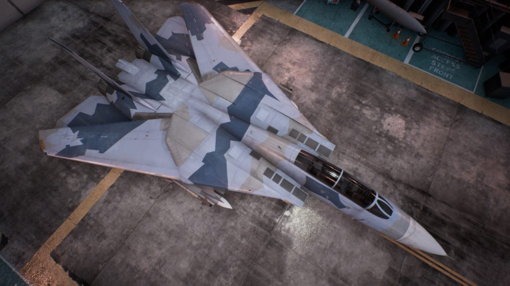 ACE COMBAT™ 7: SKIES UNKNOWN_F-14D Super Tomcat02 Erusea Skin