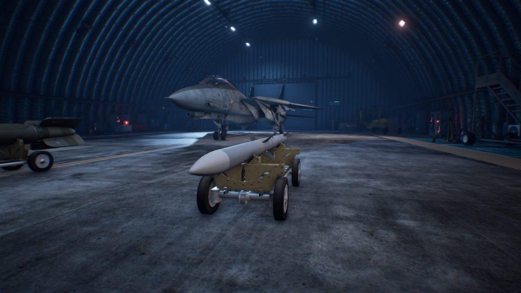 ACE COMBAT™ 7: SKIES UNKNOWN_F-14D Super Tomcat 8AAM